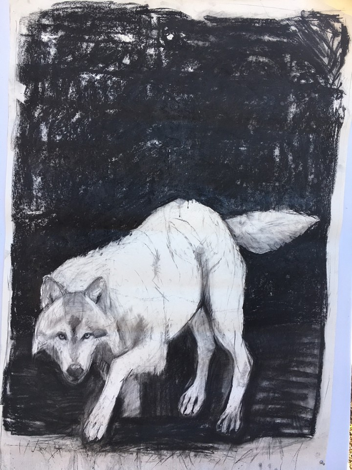 Helen Durant, Lone Wolf 2017, Acrylic and Charcoal on Canvas