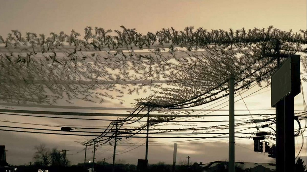 Dennis Hlynsky, Starlings Change Lines (Still) Photograph, Archival Paper with Pigment Ink