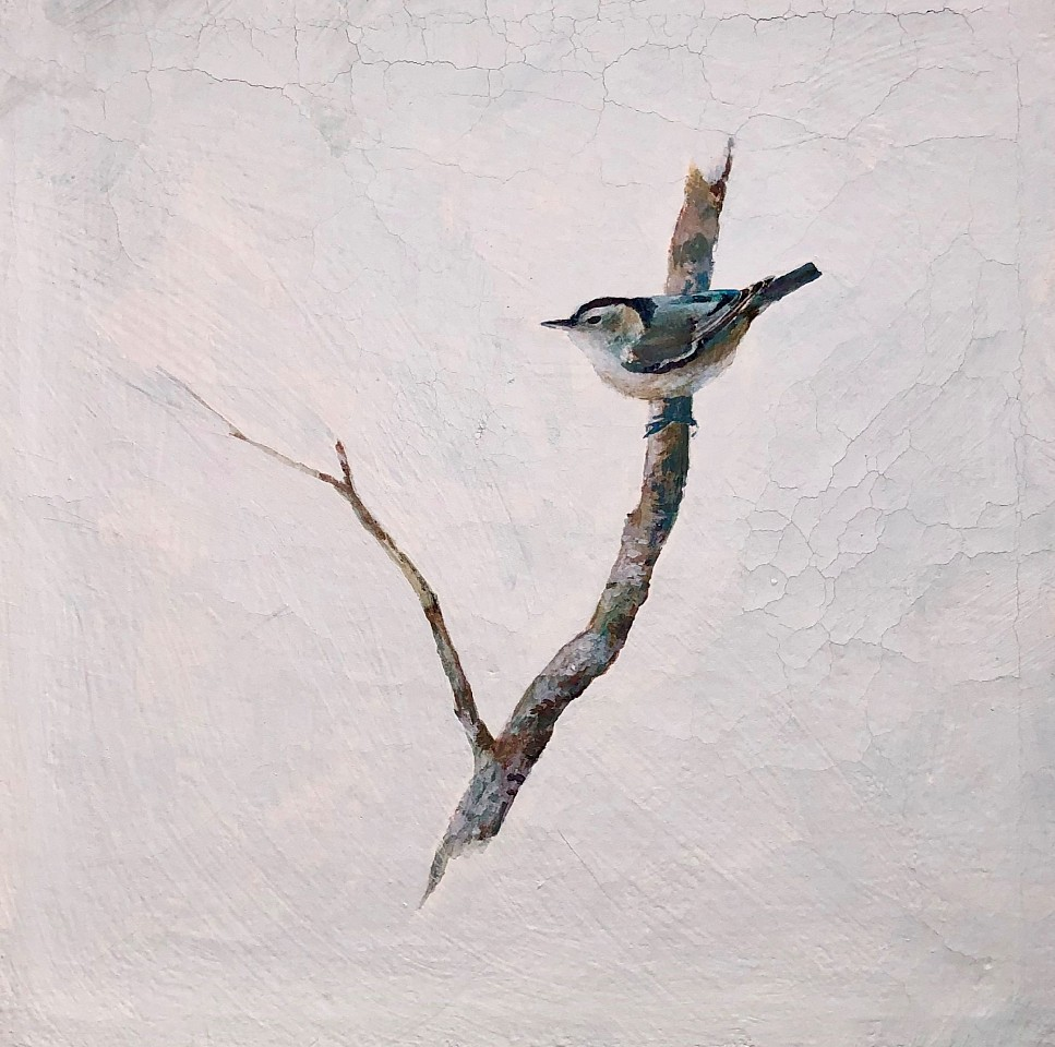 Peter Hoffer, Nuthatch 2 Pigment, Fresco on Linen
