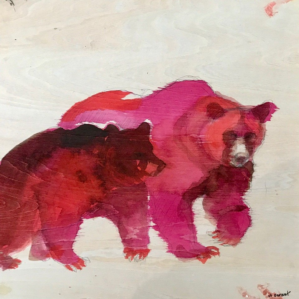 Helen Durant, Bear Walk 2019, Pencil and Ink on Wood