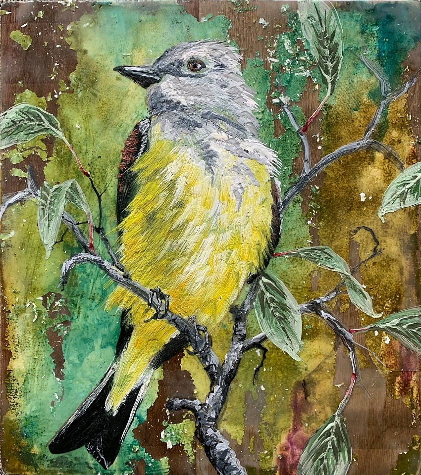 Chris Reilly, Cassin's Kingbird 2020, Encaustic & Mixed Media on Panel