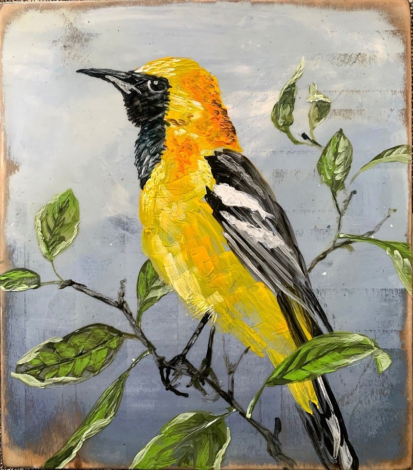 Chris Reilly, Make Hooded Oriole 2020, Encaustic & Mixed Media on Panel